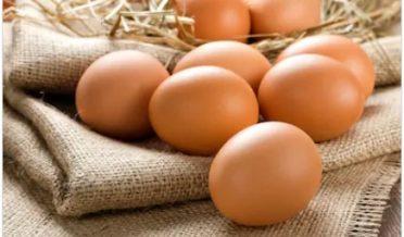 مرغیوں کے انڈے