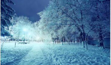 موسم سرما کی سرد برفانی رات، درخت، روشنی