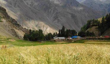 رٹو، استور، گلگت بلتستان، پاکستان